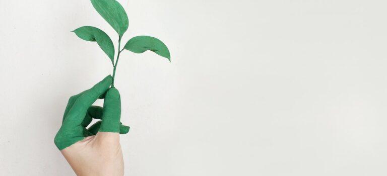 Bæredygtigt tøj er fremtiden